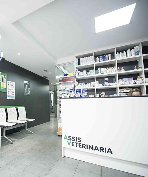 assis_veterinaria_portada